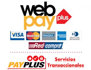 Logo HD Web